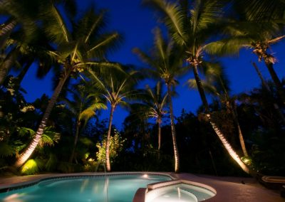 Pool with palm trees at night